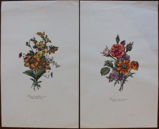 Two floral large prints