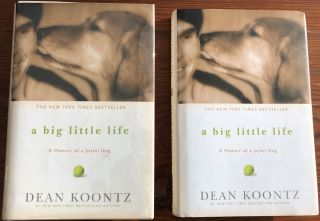 Dean Koontz collection