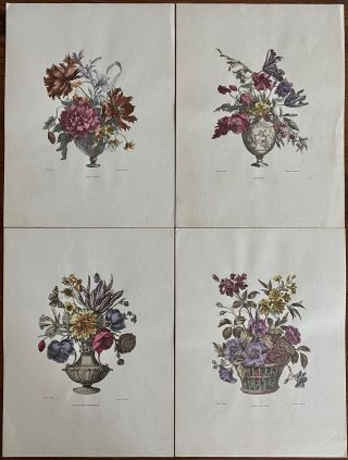 Four Botanical Flowers in Vases hand-colored engravings. J. Baptiste, Jean Baptiste Monnoyer,...